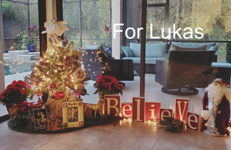 No decorations for Christmas